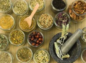 Сбор трав для похудения в домашних условиях
