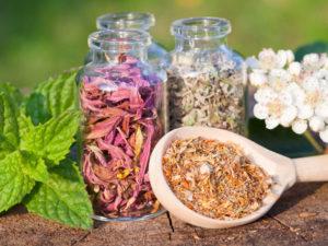 Травы для похудения в домашних условиях