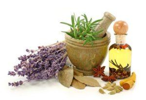 Травы для похудения самые эффективные