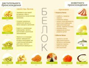 Белковая диета для похудения эффективно